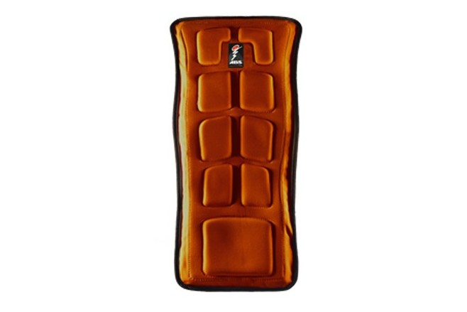 ABS Protector L