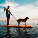 Paddle surf / SUP